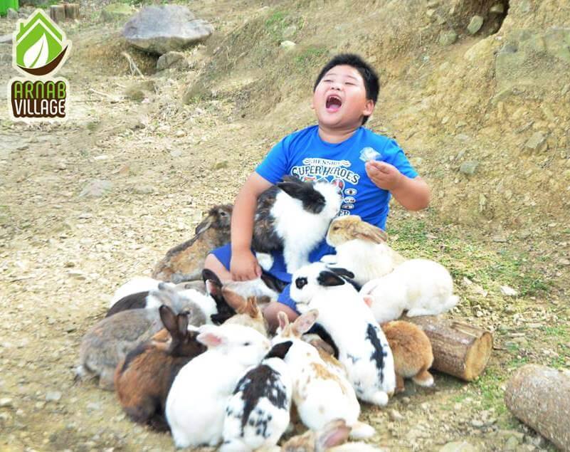 Arnab Village Di Ranau Sabah Yang Anda Perlu Lawat