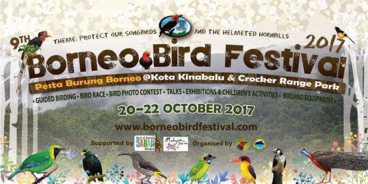Anda Perlu Cuba Pergi Ke Sambutan Borneo Bird Festival Ini
