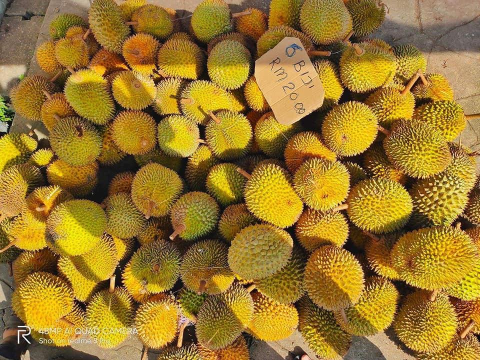 8 Port Durian Paling Power Di Sekitar Kuching dan Serian