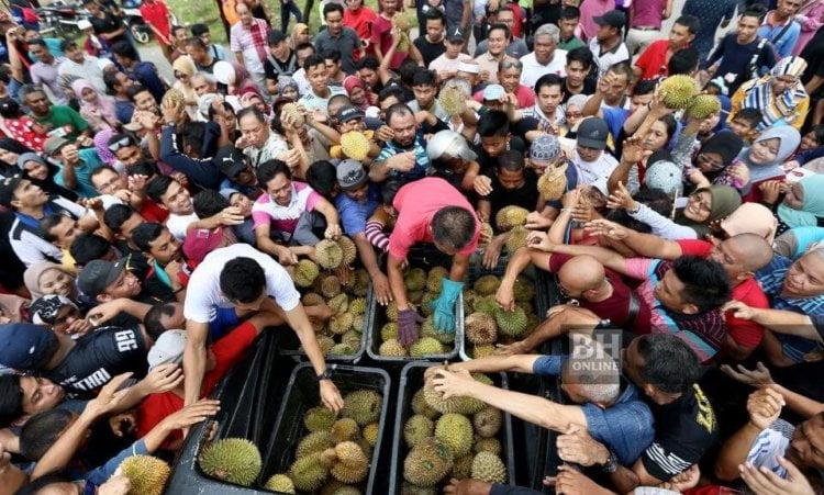 2000 Biji Durian Percuma Menanti Pengunjung Program Sarawakku Sayang Di Samarahan