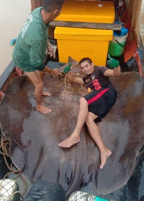 Tangkap Pari Gergasi 280 Kilo, Rezeki Ramadan Buat Nelayan Di Lundu Ini