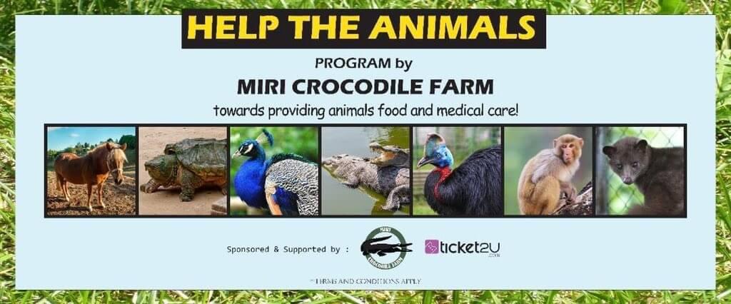 Bermula RM 10, Anda Boleh Bantu Haiwan Di Miri Crocodile Farm Untuk Terus Hidup