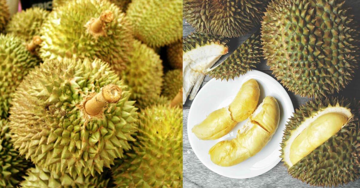 Photo of Pekerja Pos Di Jerman Terpaksa Dimasukkan Ke Hospital Setelah Terhidu Bungkusan Durian