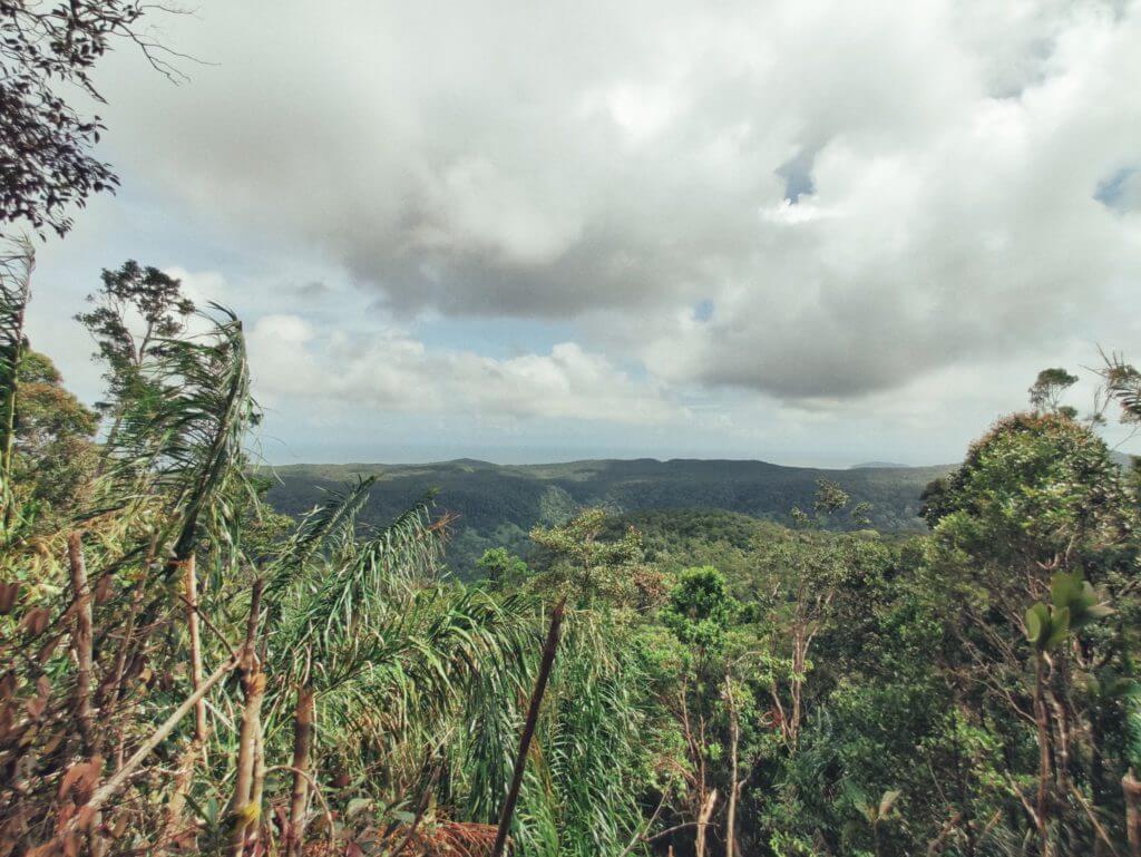 Gunung Kelambu Lang, Hidden Gems Yang Anda Mesti Tawan Di Kuching