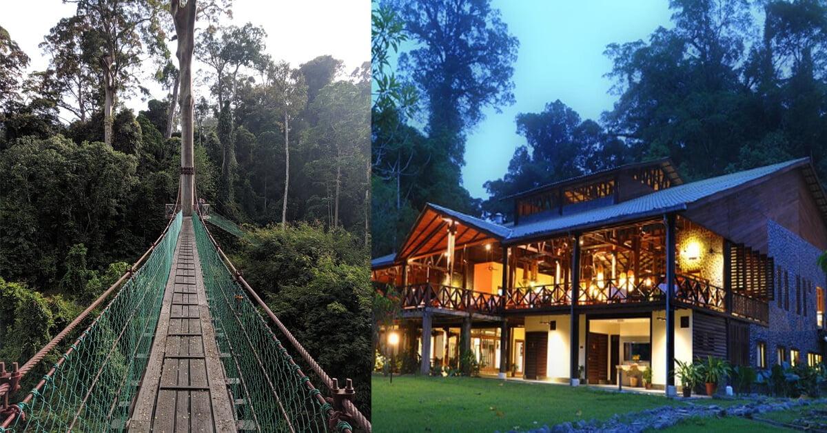 Photo of Nikmati Alam Semula Jadi Dengan Style Di Borneo Rainforest Lodge, Lembah Danum