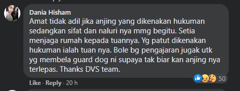Anjing Pitbull Gigit Wanita Hingga Parah, Netizen Gesa Pemilik Anjing Didenda