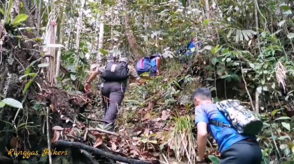 Laluan Mencanak Yang Ekstrim Untuk Pendaki Tegar, Gunung Tajul Manuk Tarikan Terbaru Di Banjaran Bengoh