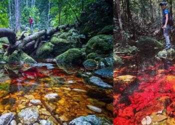Aliran Air Sungai Berwarna Merah, Anda Pasti Kagum Dengan Balung Lost World Di Tawau