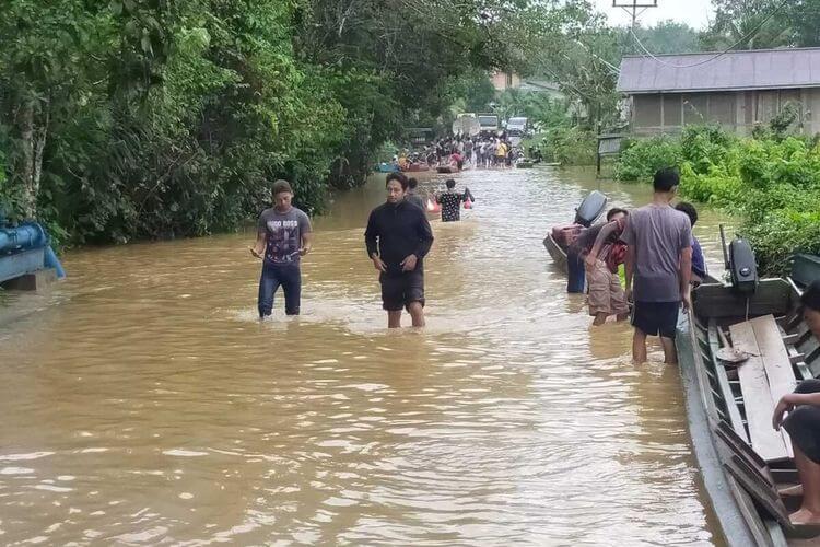 Banjir Besar Akibat Ladang Sawit, Pemerintah Di Kalimantan Barat Dakwa Punca Dari Sarawak
