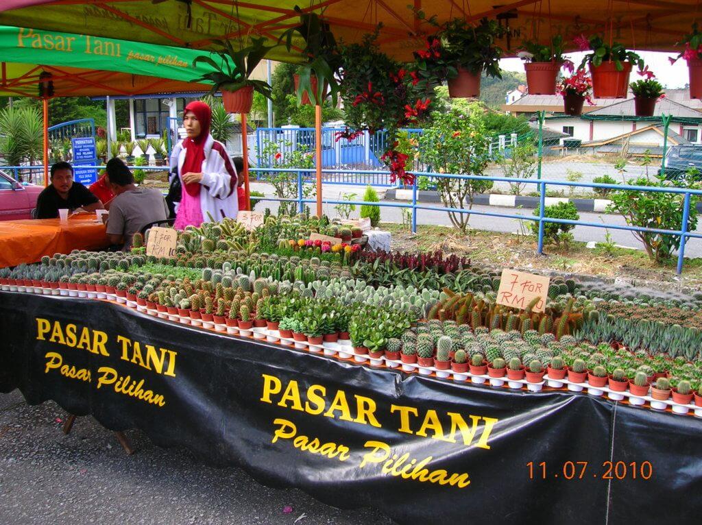 Pasar Tani Dan Pasar Tamu Tidak Dibenarkan Beroperasi Di Kawasan Zon Merah, Sarawak