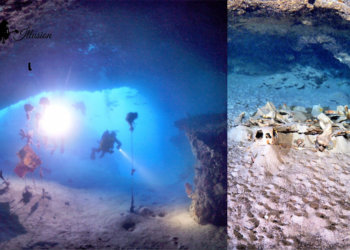 Keunikan Turtle Cave Di Pulau Sipadan Sabah, Satu-Satunya Makam Penyu Di Dunia