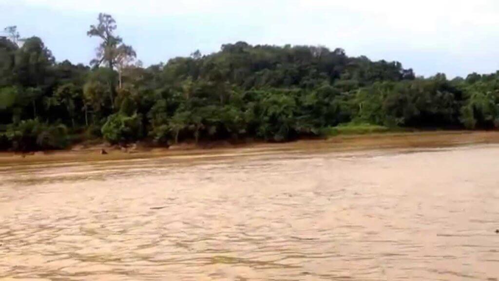 Warga Emas 82 Tahun Berkerusi Roda Gagah Redah Sungai Guna Bot Untuk Ke Pusat Vaksinasi Kuching